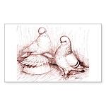 Tumbler Pigeons Rectangle Sticker