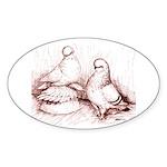 Tumbler Pigeons Oval Sticker
