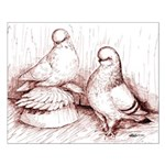 Tumbler Pigeons Small Poster