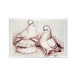 Tumbler Pigeons Rectangle Magnet (10 pack)
