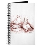 Tumbler Pigeons Journal