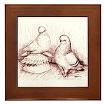 Tumbler Pigeons Framed Tile
