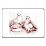 Tumbler Pigeons Banner