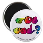 Rainbow GOT ASL? Magnet