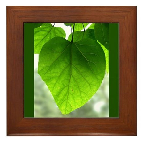 Green Heart Leaf Framed Tile