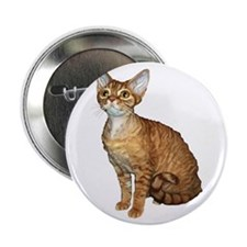 "Devon Rex Cat 2.25"" Button (100 pack)"