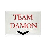Team Damon Bat Rectangle Magnet (100 pack)
