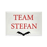 Team Stefan Bat Rectangle Magnet
