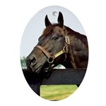 Seattle Slew Oval Ornament