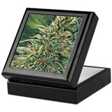 Cannabis Art Keepsake Box (Super Silver Haze)