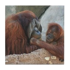 Orangutan Mom and Child Tile Coaster