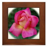 Summer Rosebud Framed Tile