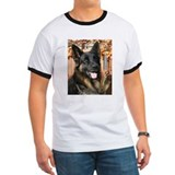 Cabo German Shepard Photo-4 T