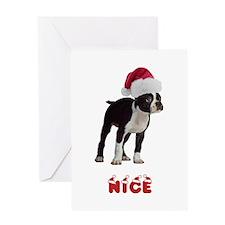 Nice Boston Terrier Greeting Card