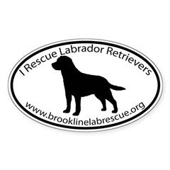 BROOKLINE LAB RESCUE Sticker (Oval)