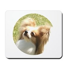 Red Sable Papillon Mousepad