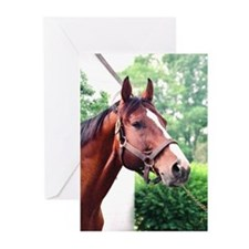 UNBRIDLED Greeting Cards (Pk of 10)