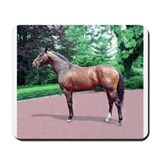 FUSAICHI PEGASUS Mousepad