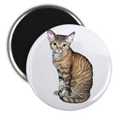 "Devon Rex Cat 2.25"" Magnet (100 pack)"