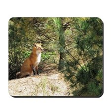 Noble Fox Mousepad