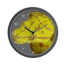 Cool Green tree python Wall Clock