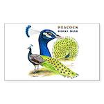 Peacock Indian Blue Rectangle Sticker 50 pk)