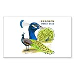 Peacock Indian Blue Rectangle Sticker 10 pk)