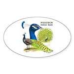 Peacock Indian Blue Oval Sticker (10 pk)