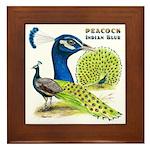 Peacock Indian Blue Framed Tile