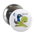 "Peacock Indian Blue 2.25"" Button"