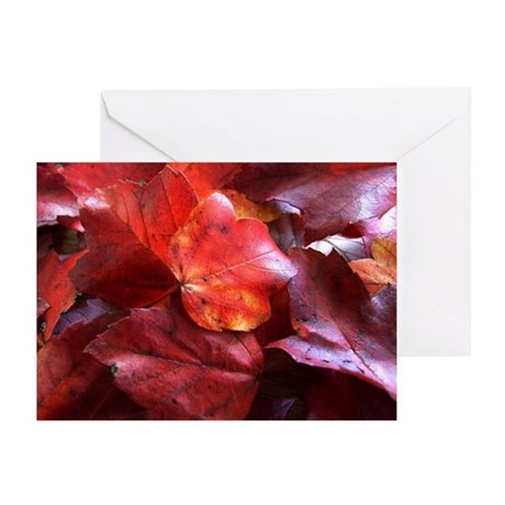 Red Leaves Greeting Cards (Pk of 20)