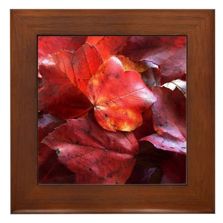 Red Leaves Framed Tile