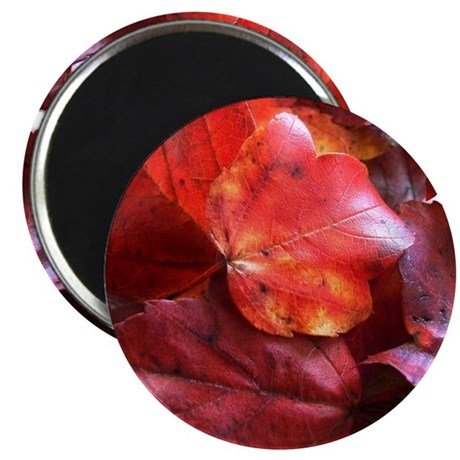 "Red Leaves 2.25"" Magnet (10 pack)"