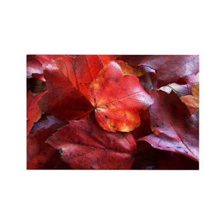 Red Leaves Rectangle Magnet