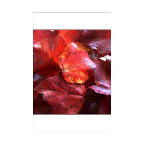 Red Leaves Mini Poster Print