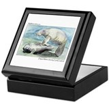 Manatee Keepsake Box