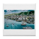 St. Croix, Virgin Islands Tile Coaster