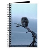 Snowy Saw-whet Owl Journal