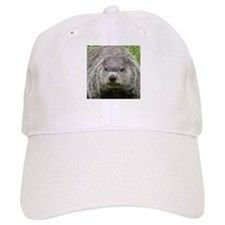 Groundhog Eating Baseball Cap