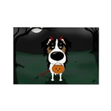 Tri Aussie Devil Halloween Rectangle Magnet (100 p