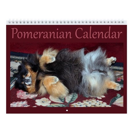 2013 Pomeranian Wall Calendar