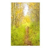 Aspen Trail Deer Postcards (Package of 8)
