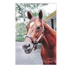 HORSE CHESTNUT Postcards (Package of 8)