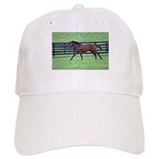 GHOSTZAPPER Baseball Cap