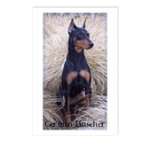 Funny Doberman pinscher Postcards (Package of 8)