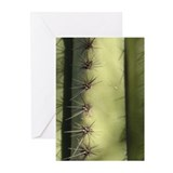 Saguaro Greeting Cards (Pk of 10)
