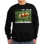 Outstanding Sweatshirt (dark)