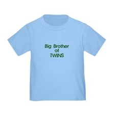 Big Brother of Twins T