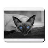 Siamese Cat B&W Photo Art Mousepad