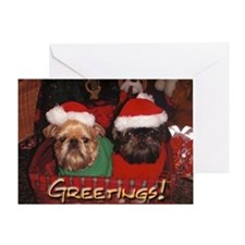 Brussels Griffons Greeting Card Blank Inside